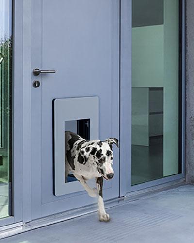 petWALK - door mount