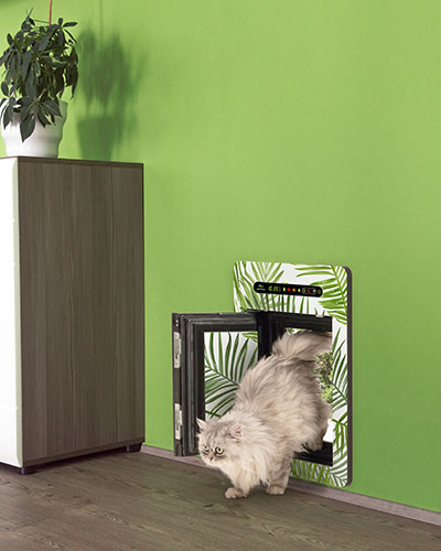Inside view of petWALK pet door medium installed into green wall in open state with with cat